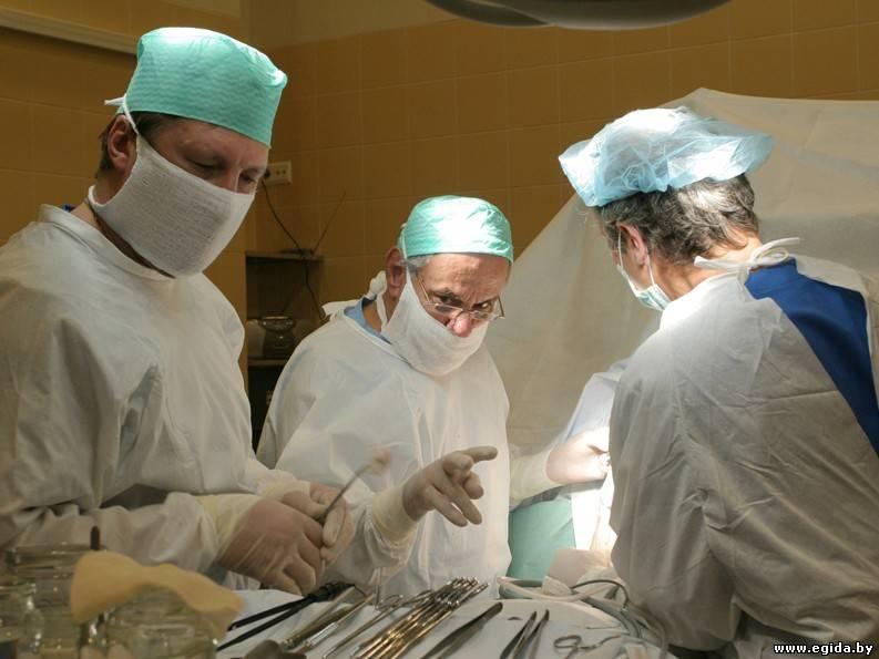 Стерилизация собак лапароскопическим методом - b