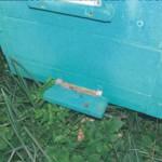 Корма и подкормка для пчел