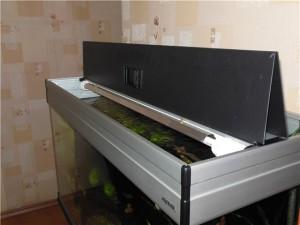 Современная аквариумистика, фото